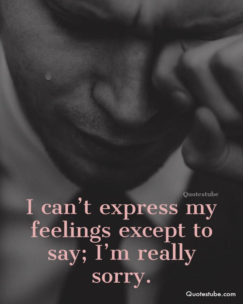 im sorry quotes 6