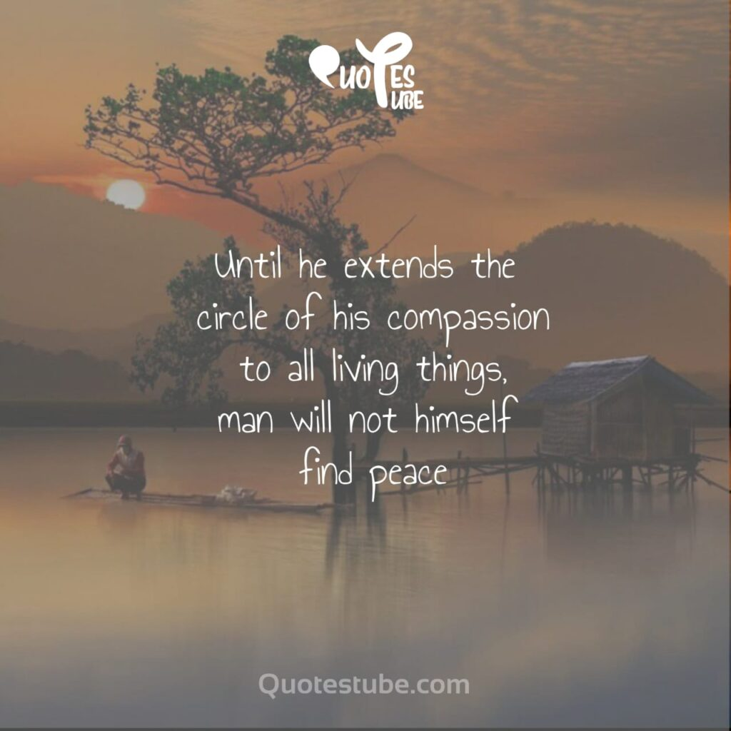 peace quotes 1